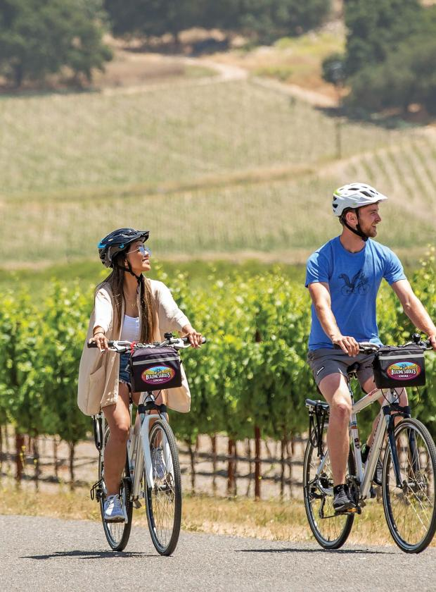 Couple riding bikes along sunlit vineyards in Sonoma County