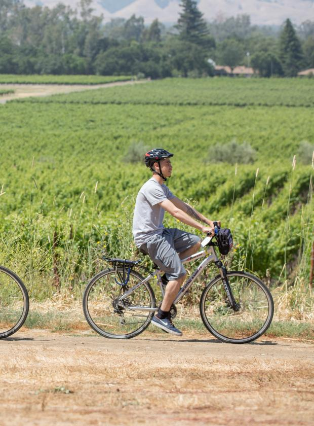 Riding the trails around the vineyards in Sonoma County with clear skies and sunshine