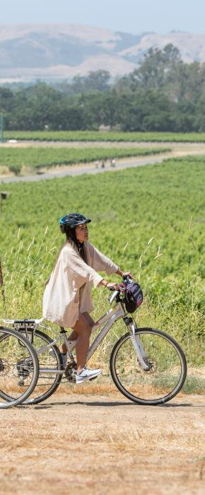 Cycle the Vineyards - Blazing Saddles Sonoma