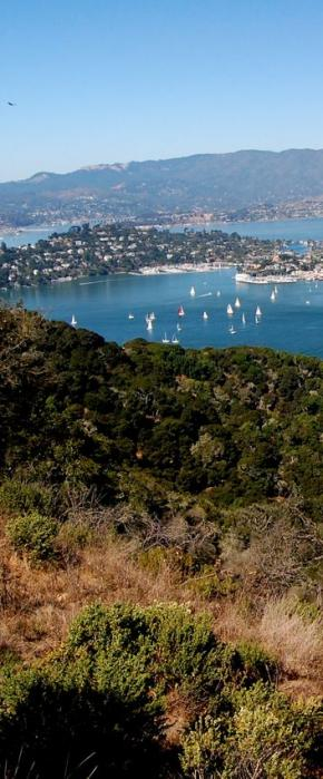 Stunning views of Tiburon and The Bay from Angel Island