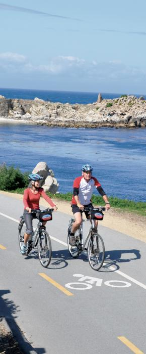 Guided Group Bike Tours Blazing Saddles